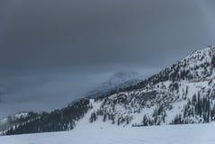 在山的积雪的树冠上与喜怒无常的天空 库存图片