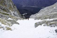 在山的积雪的结构树 33c 1月横向俄国温度ural冬天 免版税图库摄影