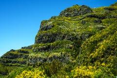 在山的笤帚在马德拉岛的海岛的北部 库存图片