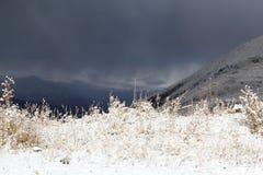 在山的第一雪 免版税库存图片