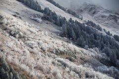 在山的第一霜 库存照片