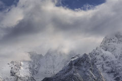 在山的第一霜 免版税库存图片