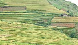 在山的米大阳台和村庄 图库摄影