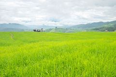 在山的米大阳台,和那里是小屋在米领域中间 库存图片