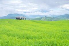 在山的米大阳台,和那里是小屋在米领域中间 免版税图库摄影