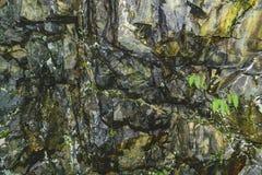 在山的纹理石岩石 免版税图库摄影
