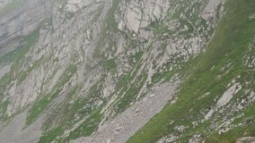在山的绵羊 高山峰顶landskape背景 少女峰,Bernese高地 阿尔卑斯、旅游业和冒险远足 股票录像