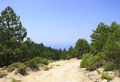 在山的美丽的土路 库存照片
