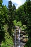 在山的美丽的流动的喷泉在热带 免版税图库摄影