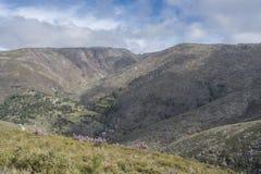 在山的美好的上面在葡萄牙 库存图片