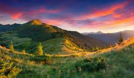 在山的美好的夏天风景。 库存图片