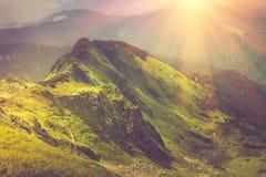 在山的美好的夏天风景在阳光 免版税图库摄影