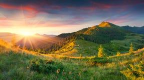 在山的美好的夏天风景 库存照片