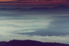 在山的美好的有雾的早晨 免版税图库摄影