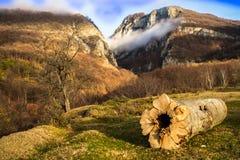 在山的美好的横向 日落 库存图片