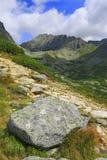 在山的老石头 库存照片