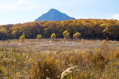 在山的脚的秋天领域 免版税库存照片