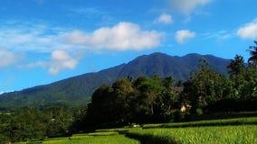在山的自然风景在一个晴朗的早晨和适用于墙纸 免版税库存图片