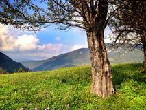在山的自然风景 免版税库存图片