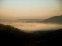 在山的草在冬天吃草,有雾 免版税图库摄影