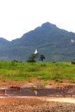 在山的菩萨雕象与多云 免版税库存图片