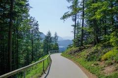 在山的被铺的路 免版税库存图片