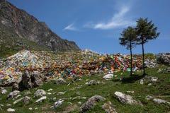 在山的西藏祷告旗子 免版税图库摄影