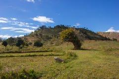 在山的谷风景 库存照片