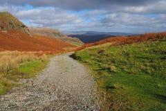 在山的道路通过石南花和蕨在温暖的秋天颜色,湖区 免版税图库摄影