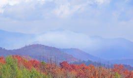在山的野火 免版税库存图片