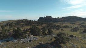 在山的针叶树在蓝色和多云天空下 射击 在谷的美妙的纯净的天 影视素材