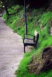 在山的长凳 免版税图库摄影
