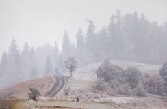 在山的降雪 更改季节 冬天来 Carpath 免版税库存照片