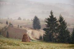 在山的降雪 更改季节 冬天来 Carpath 库存图片