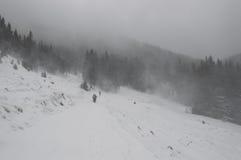 在山的雪风暴 免版税库存照片