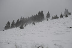 在山的雪风暴 库存照片