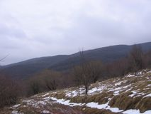 在山的雪 免版税库存图片