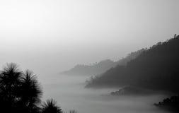 在山的雾早晨 库存图片