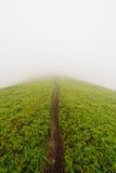 在山的雾的路 免版税库存图片