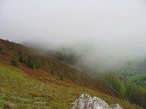 在山的雾 免版税库存图片