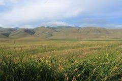 在山的领域 免版税库存照片