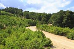 在山的风景土路 图库摄影