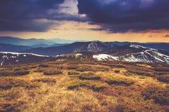 在山的风景:多雪的上面和春天谷 免版税图库摄影