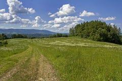 在山的风景 免版税图库摄影