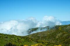 在山的风轮机在马德拉岛的海岛的北部 免版税图库摄影