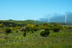 在山的风轮机在马德拉岛的海岛的北部 图库摄影