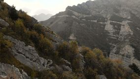 在山的飞行在具球果森林上的山岭地区以山村为目的 影视素材