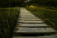 在山的高部分的木桥梁 免版税库存照片
