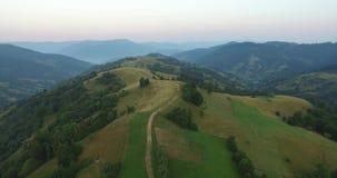 在山的鸟瞰图飞行 乌克兰 Sunevyr 飞行在树 森林谷 雾在水的草甸早晨 影视素材