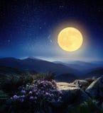 在山的满月 免版税库存照片